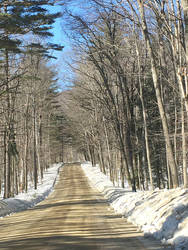 Road Stripes by KarenAld