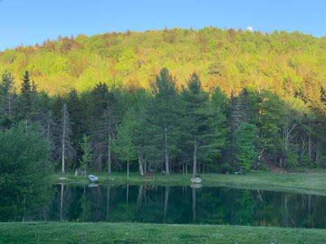 Cache Pond Mirror