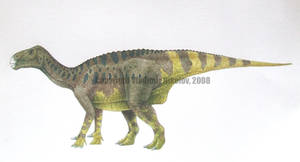 Iguanodon bernissartensis by T-PEKC