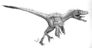 Achillobator giganticus by T-PEKC