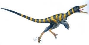 Buitreraptor gonzalezorum by T-PEKC