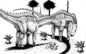 Dicraeosaurus hansemanni by T-PEKC