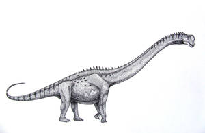 Europasaurus holgeri by T-PEKC