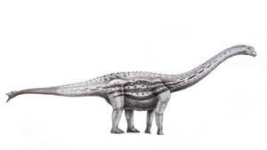 Spinophorosaurus nigerensis by T-PEKC