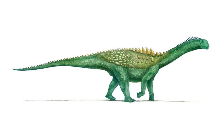 Ampelosaurus atacis by T-PEKC