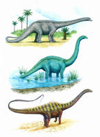 Diplodocus through the years by T-PEKC