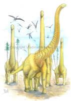 Puertasaurus reuili by T-PEKC
