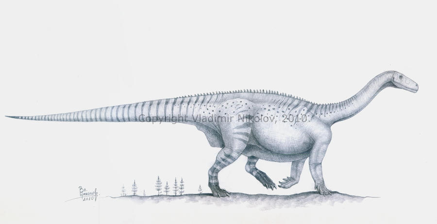Melanorosaurus readi by T-PEKC