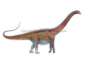 Alamosaurus sanjuanensis by T-PEKC