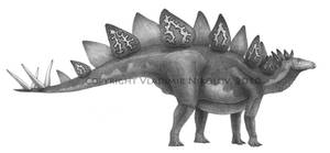 Stegosaurus stenops by T-PEKC