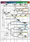 Evolution of Dinosauria