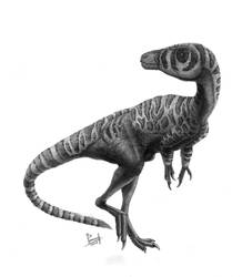 Huaxiagnathus orientalis by T-PEKC