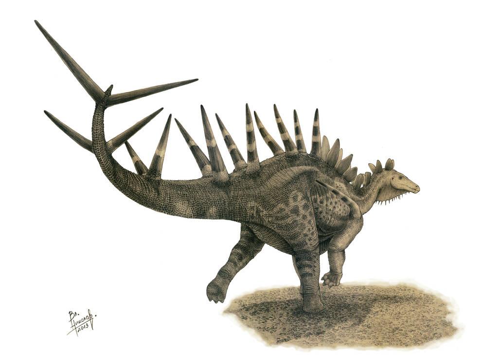 Kentrosaurus aethiopicus by T-PEKC