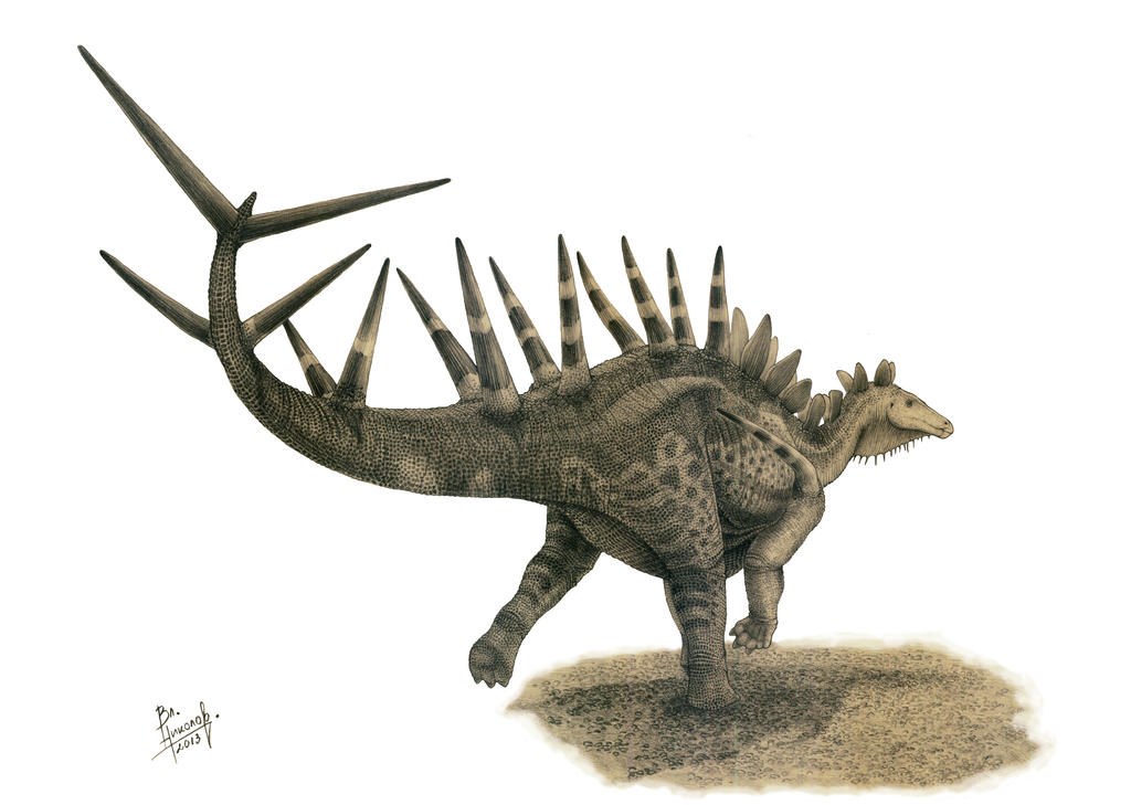 kentrosaurus coloring pages - photo#35