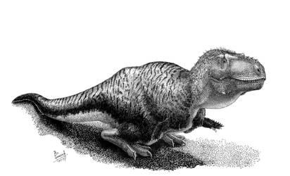 Tarbosaurus bataar by T-PEKC