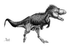 Albertosaurus sarcophagus by T-PEKC