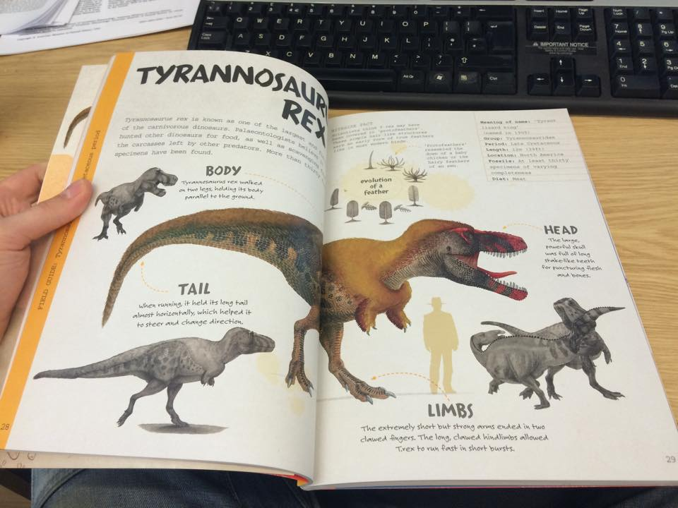 Excavate dinosaurs t rex page by T-PEKC