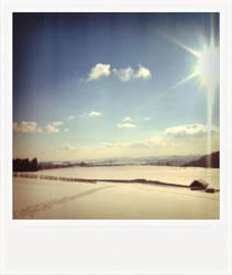 winter in my mind
