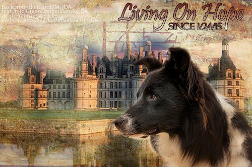 Living On Hope by BerlinlavsMarie