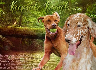Keepsake Kennels by BerlinlavsMarie