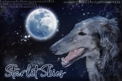 Starlit Skies by BerlinlavsMarie