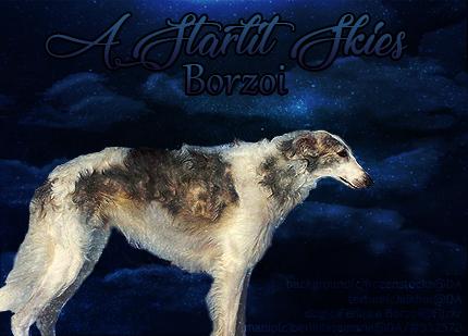 Starlit Skies Borzoi by BerlinlavsMarie