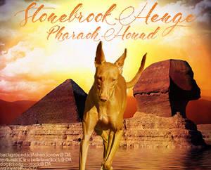 Stonebrook Henge Oasis