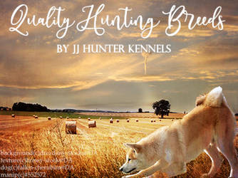 JJ Hunter Kennels