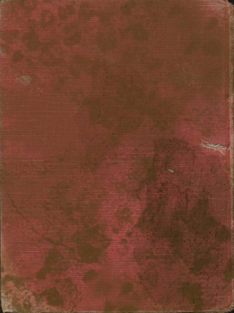 grunge red cloth book