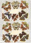 butterflies_diecut_1