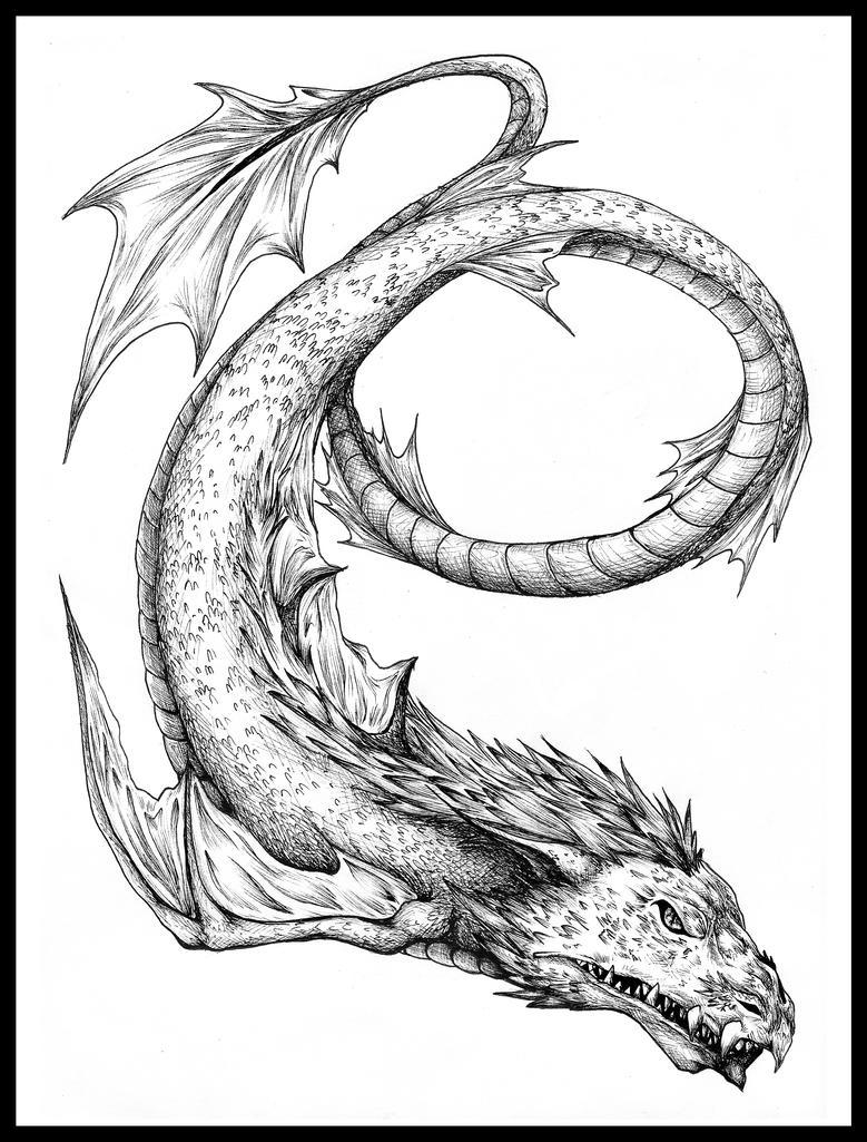 Leviathan Drawing : AWolf Illustrations