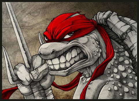 Raging Raph !!!