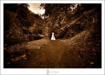DD Wedding 2 by jasonhwong