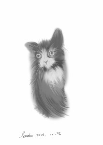 amokoART's Profile Picture