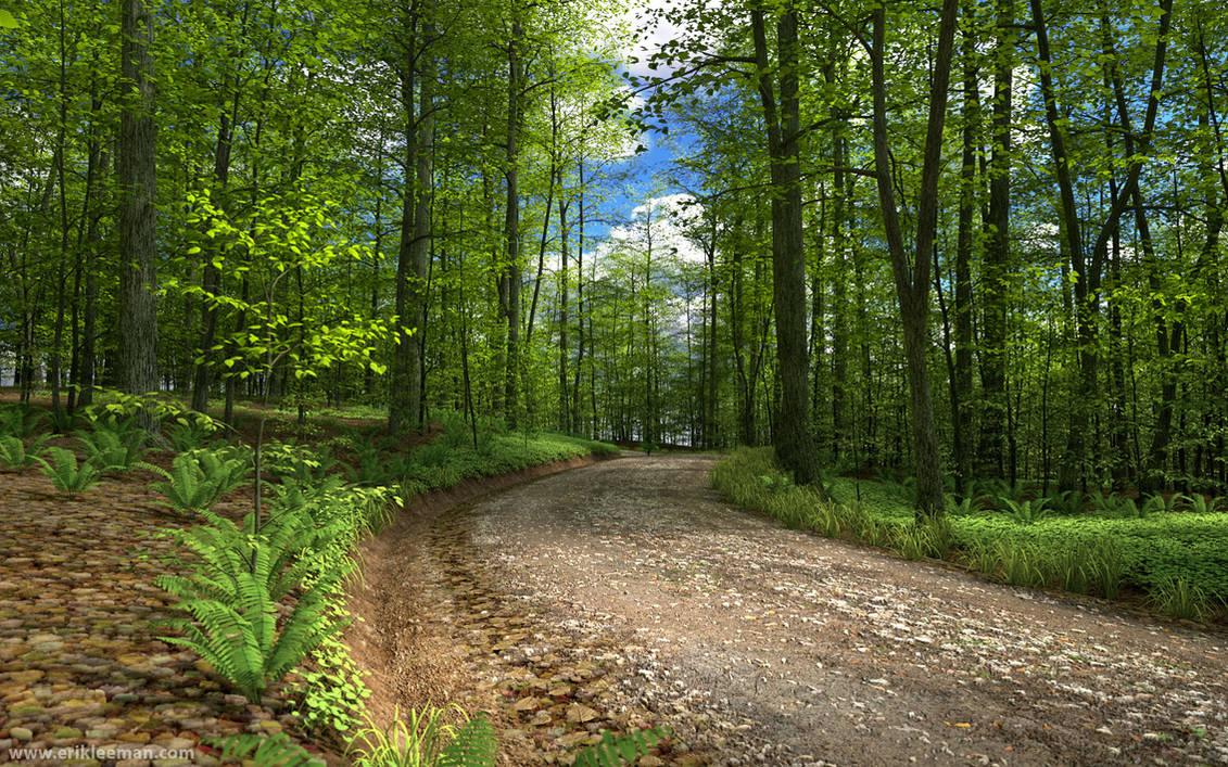 Harpwood Trail Octane test 03 by erik-nl on DeviantArt