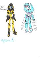 TFA Sunstreaker and Ion