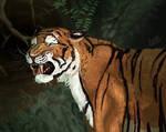 Tigers Growl