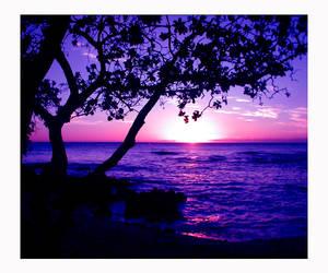 Purple Skies by kili