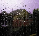 + Violet Rain
