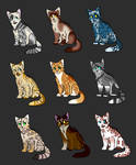 Adopts 4-12 (OPEN)