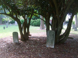 Old Cemetery 43 by fairchild-stock