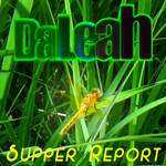 DaLeah Supper Report Dragonfly