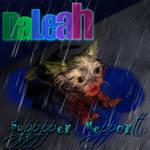DaLeah Supper Report Wet Kitten