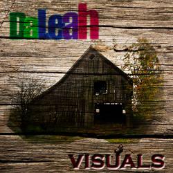 DaLeah Visuals Old Wood Barn