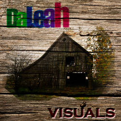 DaLeah Visuals Old Wood Barn