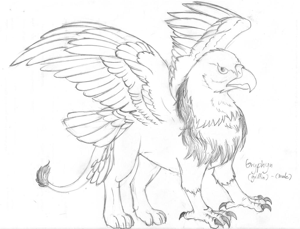 study__standard_griffin_by_winged_dragoness-d8bxov5.jpg