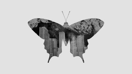 Old World Swallowtail by MorningWar