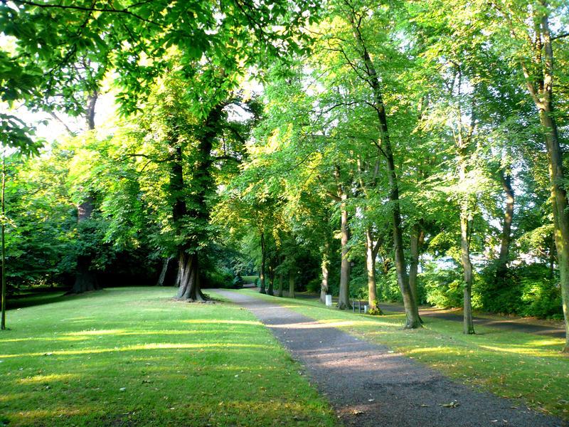 Park 4 by Ailedda