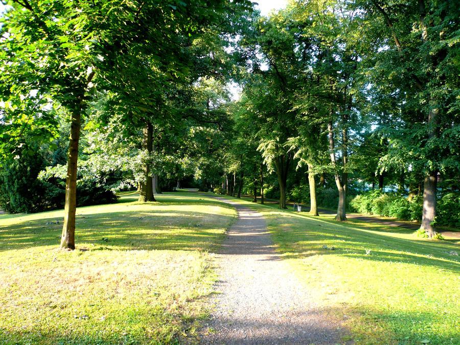 Park 5 by Ailedda