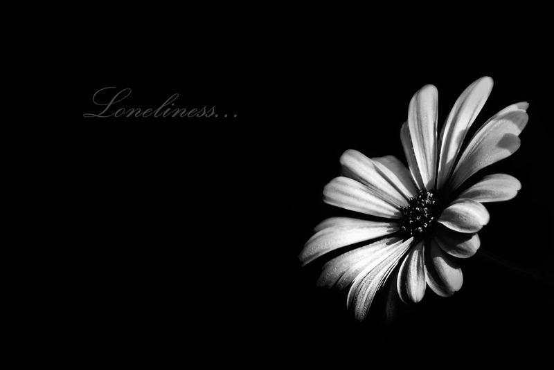 .:.Loneliness BW.:. by Ailedda